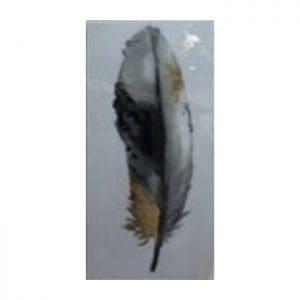 Cuadro Feather